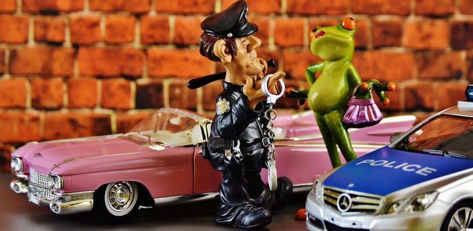 ППС может остановить машину по закону О полиции