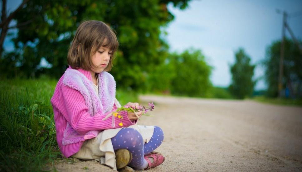 Основы ПДД для детей могут начать преподавать в школах
